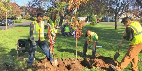Youth planting trees on the Roseway Parkway