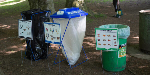 Three recyclin containers under shaded trees