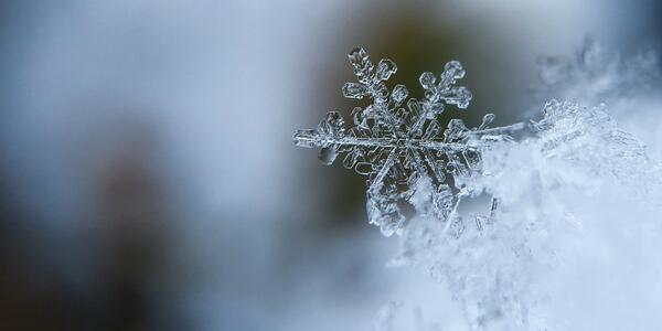 close up image of a snowflake