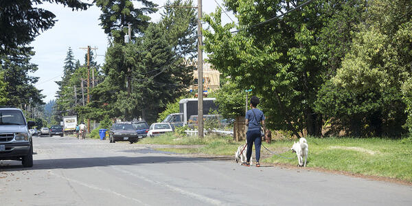 Woman walking 2 dogs on an unimproved street with no sidewalks