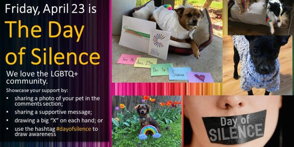 A collage showing images that celebrate the Day of Silence