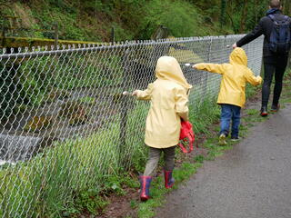 Children on a nature walk make noise with spoons on a fence.