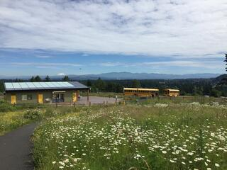 Picture of Powell Butte with flowers in blossom and view of Washington
