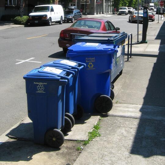 Blue recycling carts and a dumpster on the sidewalk