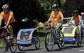 Bicyclists towing children in rear trailer