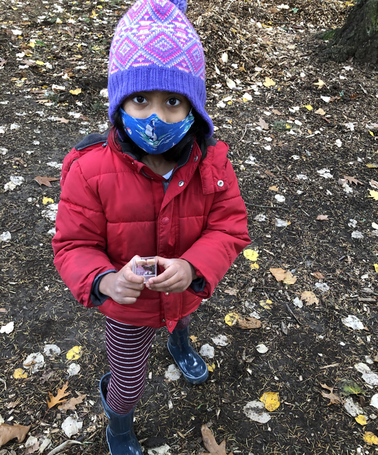 A child finds a small bug to put into a bug box.