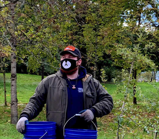 Wearing a mask while carrying mulch at a yard tree giveaway event.