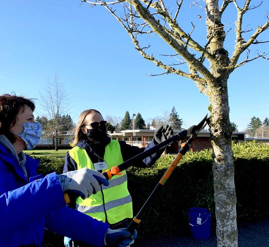 NTS Tree Pruning