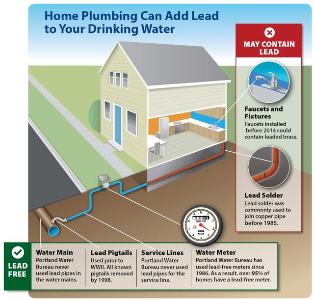 Home plumbing can add lead to your drinking water graphic. Lead free: Portland Water Bureau never used lead pipes in the water mains. Lead pigtails were used prior to WWII; all known pigtails removed by 1998; Portland Water Bureau never used lead pipes for the service lines; and Portland Water Bureau has used lead-free meters since 1986. May contain lead: Faucets and fixtures installed before 2014 could contain leaded brass; and lead solder was commonly used to join copper pipe before 1985.