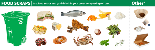 A 2d graphic showing what can be put in the green bin