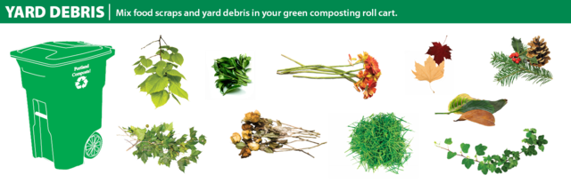 A 2d graphic showing that yard debris can go in the green bin