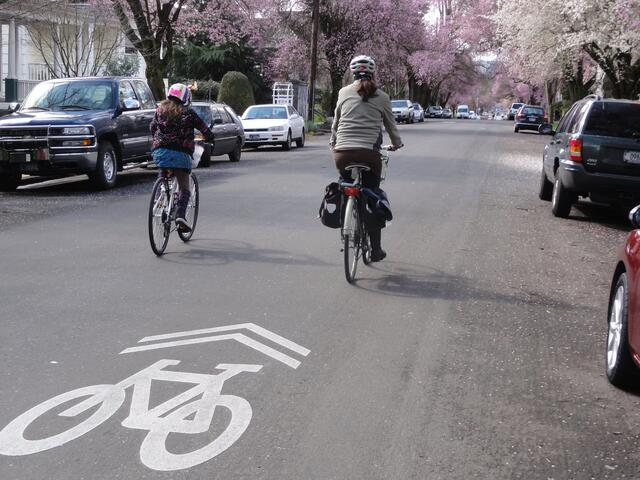 Two people biking away from the camera on a neighborhood greenway with a sharrow marking. One biker is a young person. They are riding comfortable on a street with no other traffic.