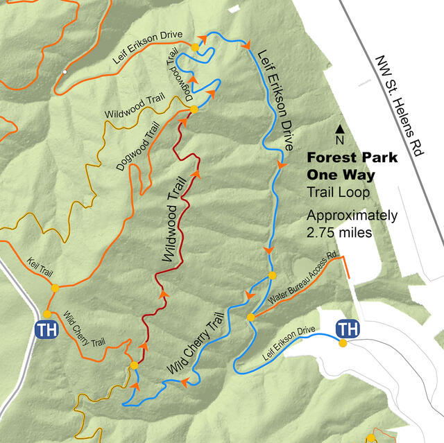 A map of the Forest Park Leif Erikson/Wild Cherry/Wildwood/Dogwood Trail Detour.