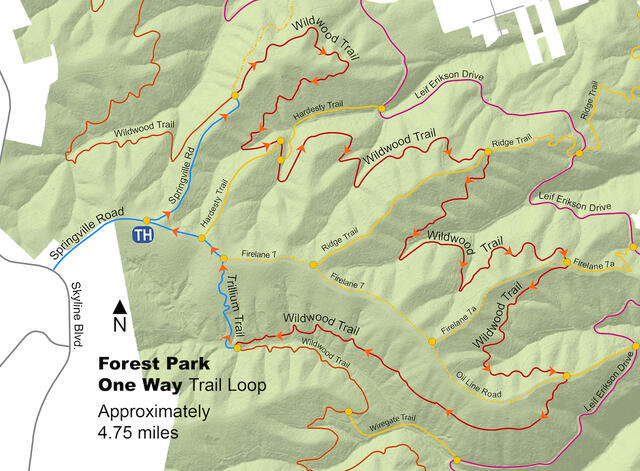 A map of the Forest Park Springville/Wildwood/Trillium/Firelane 7A One Way Loop.