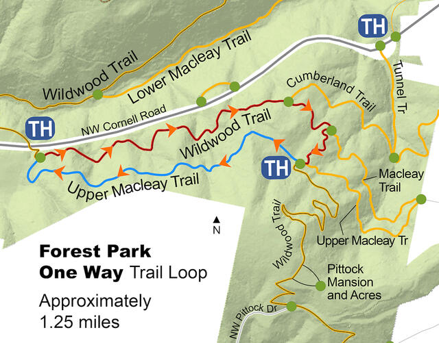 An map of the Forest Park Upper Macleay Trail Loop Detour.