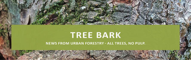 Tree Bark: News From Urban Forestry - All Trees, No Pulp