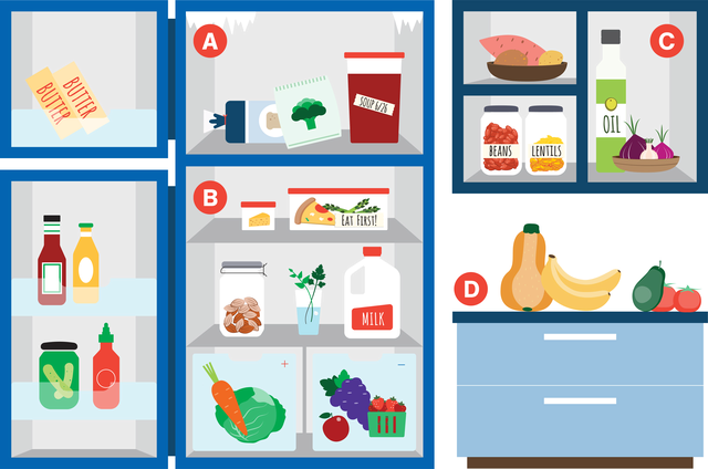 Fridge, freezer, cupboard and counter showing where to store different foods.
