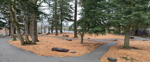 A view of the Midland Park Nature Patch
